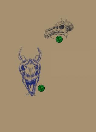 Dragon Skull 01012016